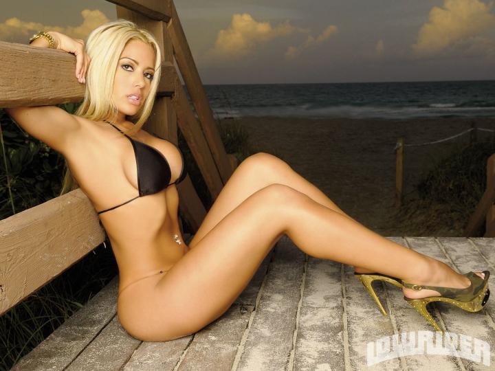Худенькая блондинка с огромными сиськами дала другу  530164
