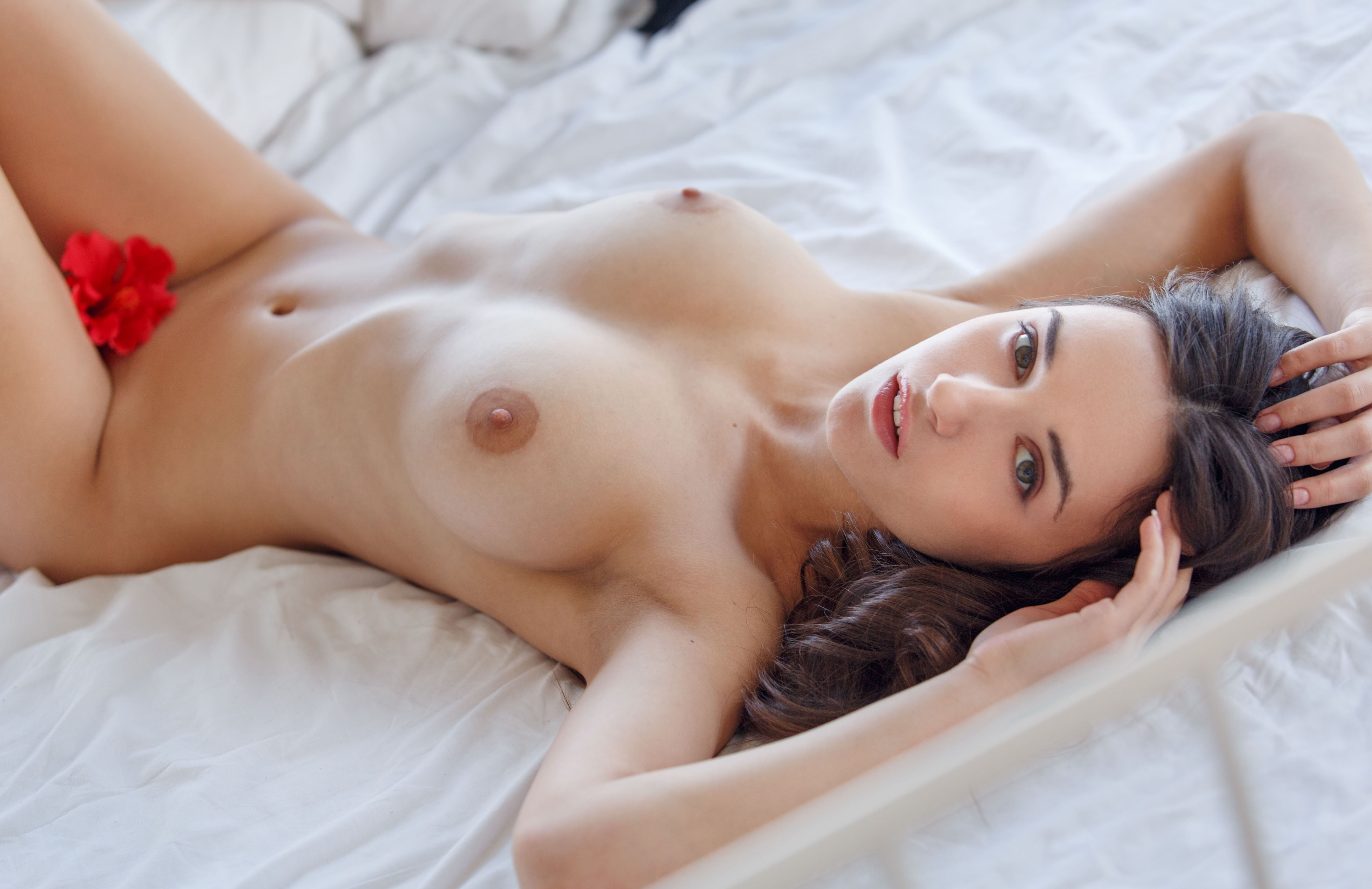 Фото Голая брюнетка в постели, роза между ног, набухшие соски, скачать картинку бесплатно