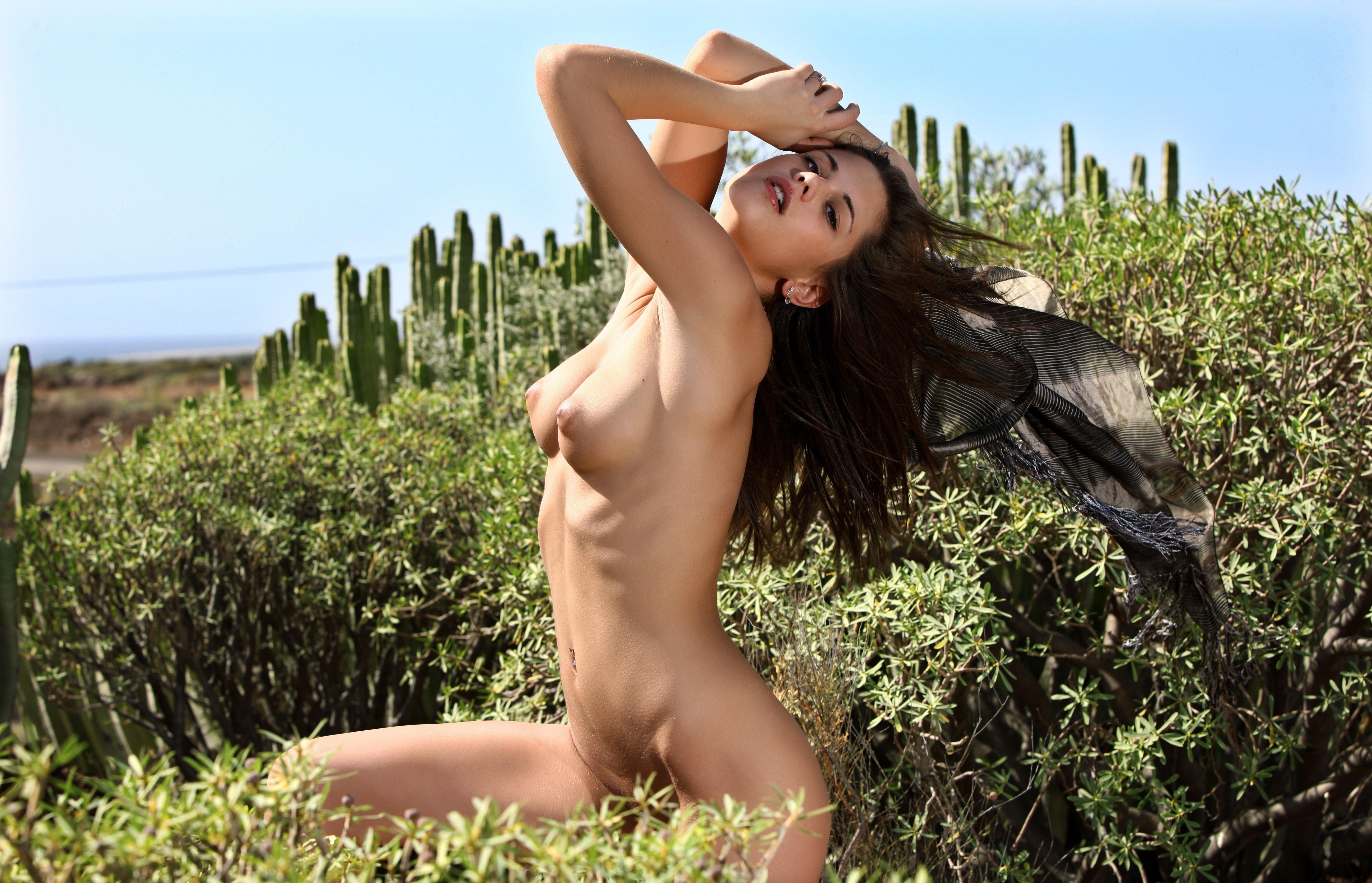Фото Голая брюнетка позирует в траве, сексуальная поза, соблазн, жаркая летняя эротика, упругие соски, зелень, скачать картинку бесплатно